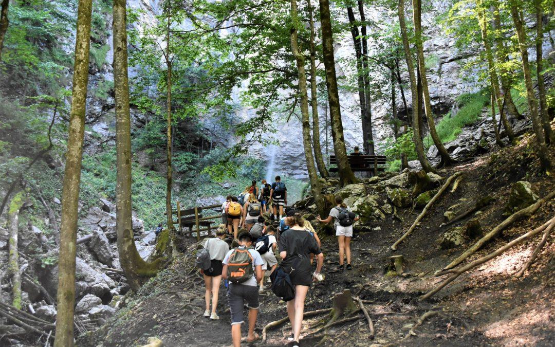Illustrasjon på en forening. Mennesker som går tur i skogen.